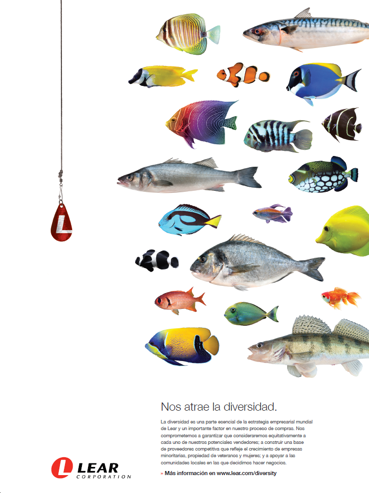 Fotografia Diversidad-Lear