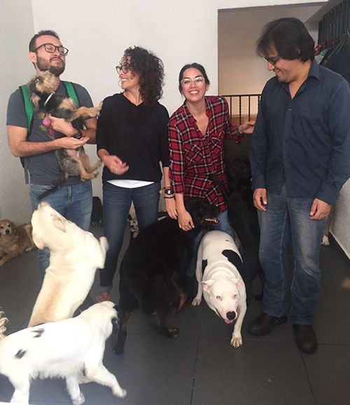 T2O media dona 52 kilos de comida a albergue para perros