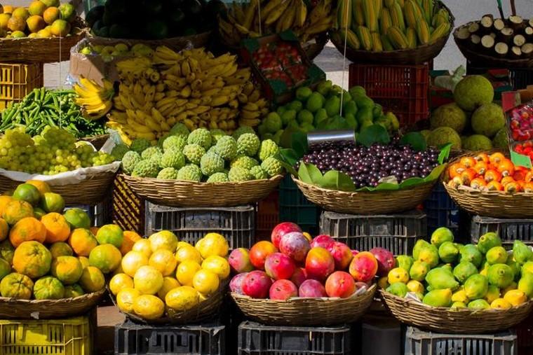 Fotografia Exportación de frutas