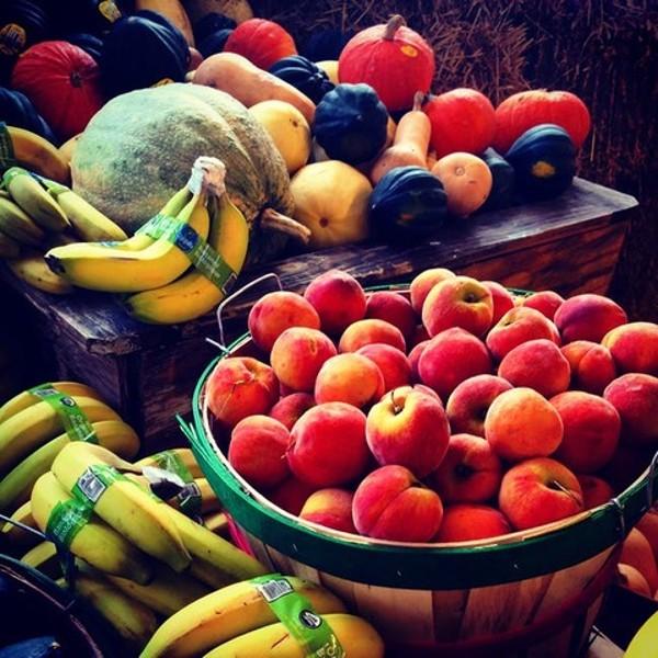 Fotografia Refrigeración de frutas y verduras