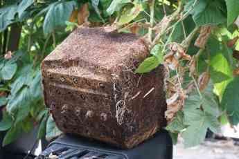 Macetas Plantlogic