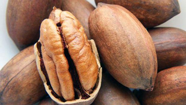 Grasas Omega 9 principal beneficio de la nuez pecanera mexicana