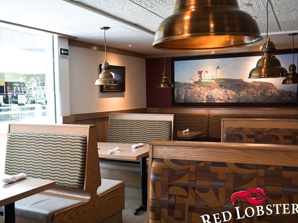 Fotografia Red Lobster