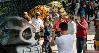 Se abre Convocatoria para formar parte de Mexicráneos 2019