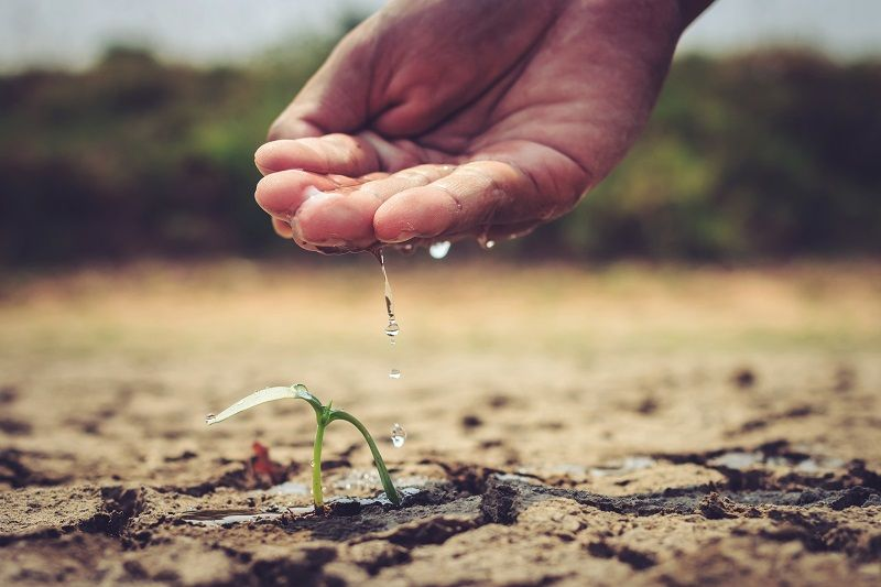 Foto de Día Mundial del Agua