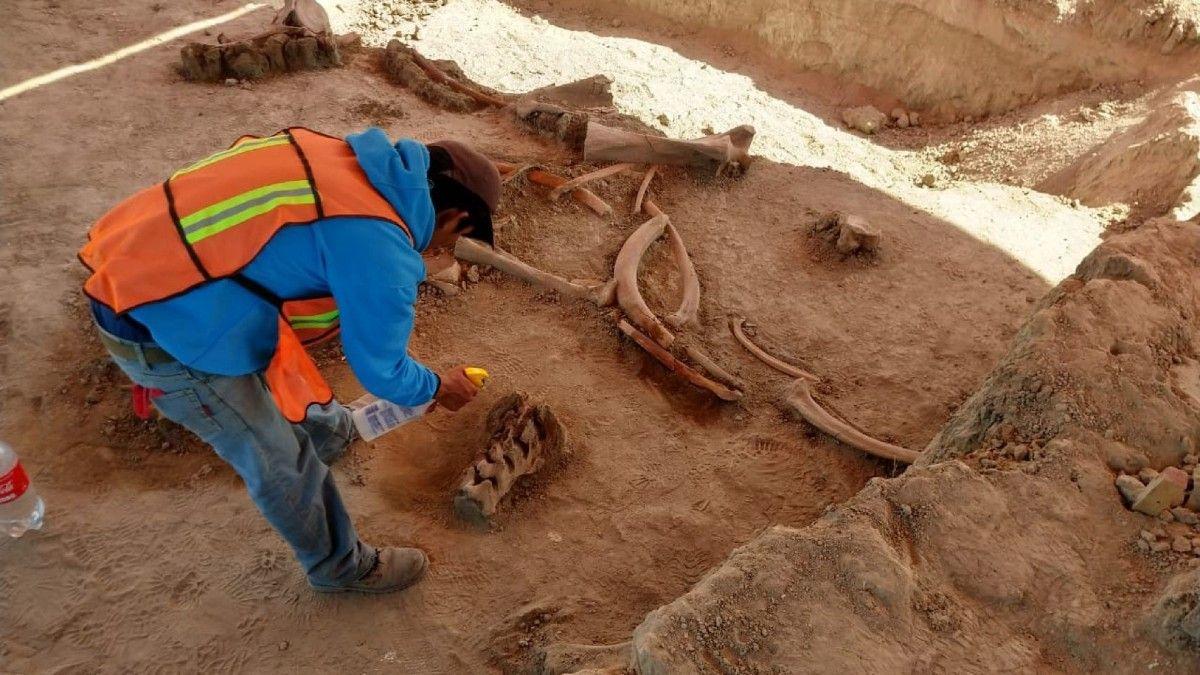 Fotografia Salvamento arqueológico delAeropuerto Internacional
