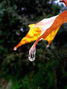Noticias Nacional | 10 Reunión Conjunta en el Día Mundial del Agua