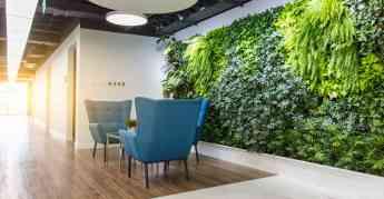 Decoración de oficinas y su impacto en la productividad laboral