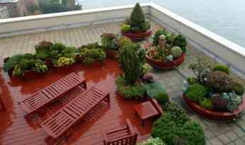 Los techos también se decoran, conoce la tendencia roof garden